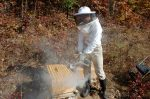 Smoke is a beekeepers friend!  Calms the bees...
